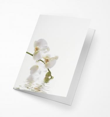 Rouwkaart Amco - Witte Orchidee