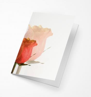 Rouwkaart Amco - Roos Peach