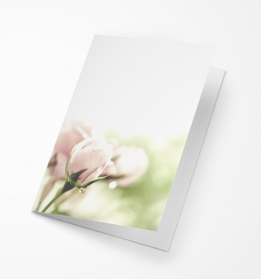 Rouwkaart Amco - Roze Roos